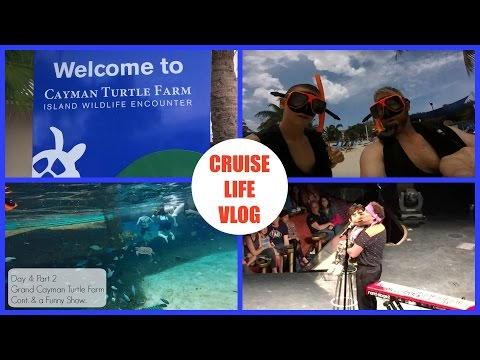 Cruise Life Vlog: Carnival Freedom Day 4: Part 2 - Grand Cayman Turtle Farm Cont. & a Funny Show!