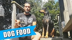 Freeze-Dried Raw Dog Food Review ft. Doberman Dante 🐾
