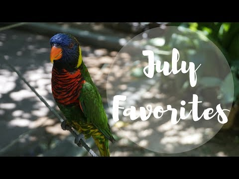 July Favorites // Maqui Berries, Sun Protection, and being a Plant-based Omnivore