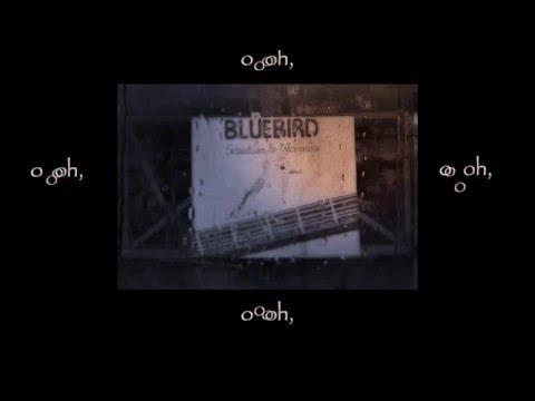 Moto Boy - Beat heart (Cover by BLUEBIRD)