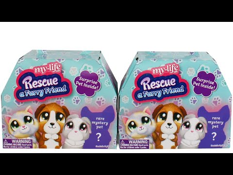 Ryan's World My Life As Doll with Blind Bags and Surprise Egg Unboxing Toy Review from YouTube · Duration:  6 minutes 22 seconds