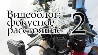 Как снять видеоблог | Фокусное расстояние(Наглядное видео о применении объективов с разным фокусным расстоянием при записи видеоблога. Будет полезн..., 2014-02-09T21:41:10.000Z)