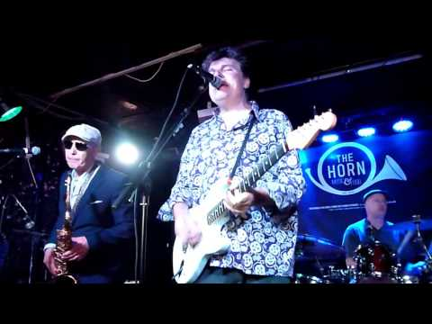 The Blow Monkeys  Digging Your Scene  The Horn, St Albans  July 2016