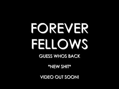 FOREVER FELLOWS - GUESS WHOS BACK
