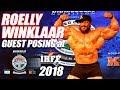 Roelly winklaar Pro-Bodybuilder Posing at Sheru Classic Delhi 2018