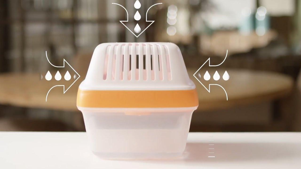 HUMYDRY Premium Plus es la solución para la humedad en casa - YouTube