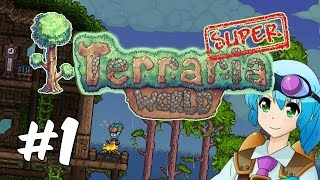Super Terraria World | Custom Adventure Map | Modded Terraria 1.3 | Part 1