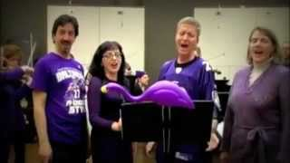 Baltimore Symphony Orchestra Salutes the Baltimore Ravens
