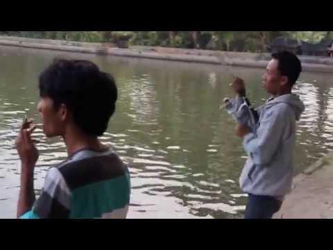 Ikan Patin Galatama 9,5kg VERSUS TEAM Jakarta Fishing Challenge