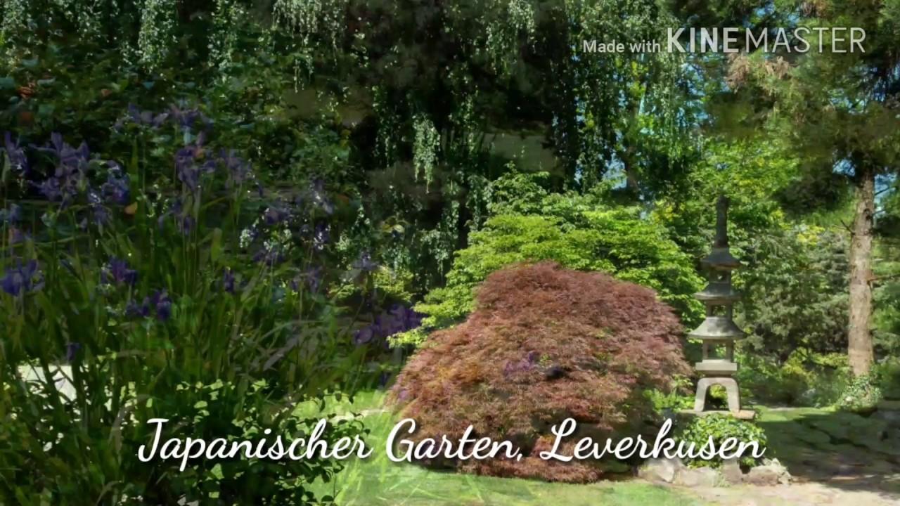 Japanischer Garten Leverkusen Youtube