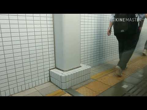 〔関空鉄道連絡橋〕復旧後の日根野→関西空港  側面展望
