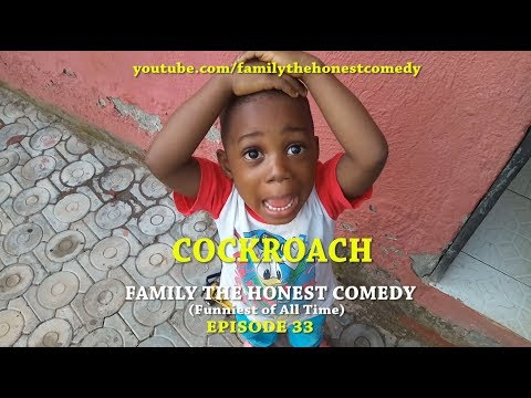 COCKROACH (Family The Honest Comedy) (Episode 33)