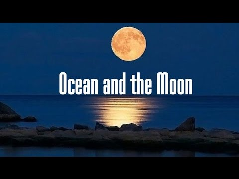 Ocean and the Moon - Vladimir Filippov (Parroslab Group)