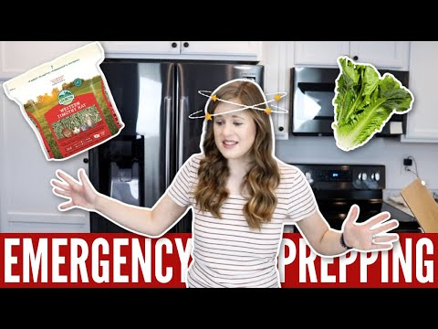 Emergency Prepping For Rabbits 😷