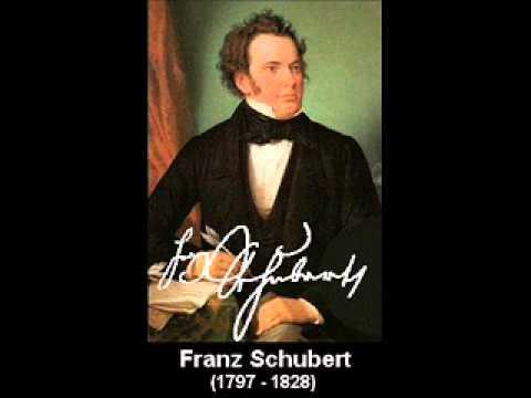 "Franz Schubert: Symphony No. 8 in B minor D.759 ""Unfinished Symphony"" I. Allegro moderato"