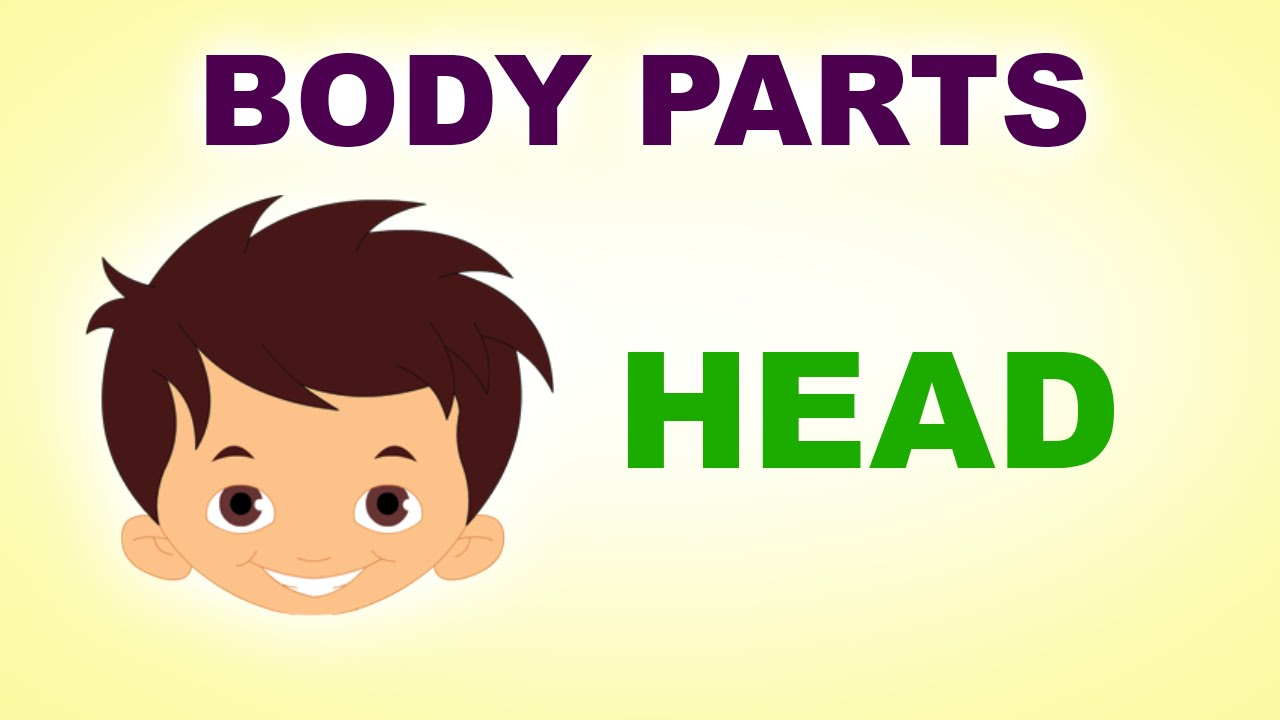 head human body parts pre school know your body Anime Mouth Cartooon Mouth