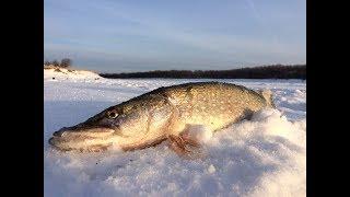 Юморная рыбалка на щуку  зимой