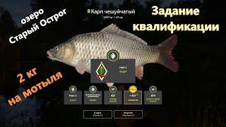 Русская рыбалка 4 озеро Старый Острог Карп задание квалификации фидер 3 2