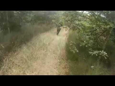 [Airsoft] Partie 26 juillet Marsat