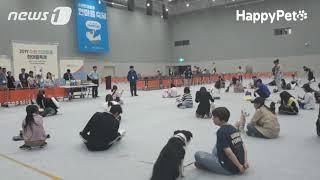 [뉴스1해피펫]코리아펫쇼수원2019