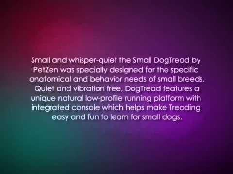 PetZen DogTread Dog Treadmill, Up to 30 Pounds, Small