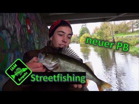 Spinnfischen  am Kanal - Barsch angeln am Bach -Spinnfischen in Streetfishing Umgebung