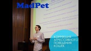 Зоопсихолог Мирослав Волков. Работа зоопсихолога и диф диагностика агрессивного поведения кошек.