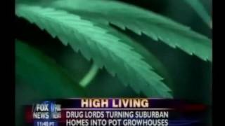 Fox News Gets Reefer Madness Over So-Called Killer Marijuana