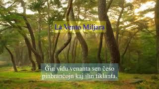 09 | Deklamado de Fontina – La Vento Miljara | 천년의 바람 – 에스페란토
