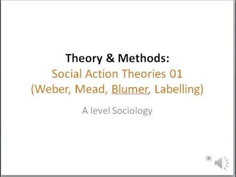 weber social action theory