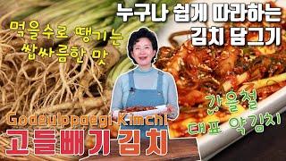 고들빼기 김치 담그기 이하연 김치명인의 별미 김치 레시…