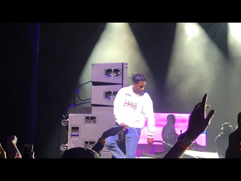 """A$AP rocky performs the song """"pick it up"""" without Famous Dex live in Portland Oregon"""