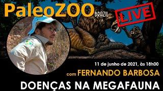 LIVE 05: FERNANDO HENRIQUE DE SOUZA BARBOSA