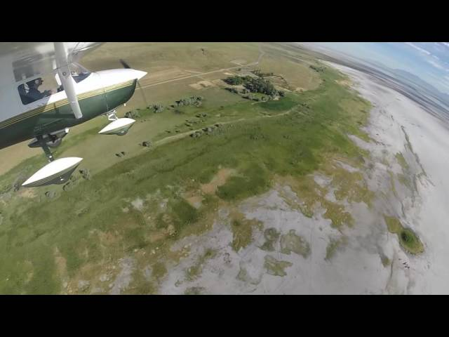 Contact flying in search of Bison on Antelope Island, Utah 20JUN16