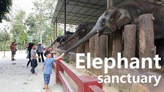 Repeat youtube video Kids having fun HuiXin BD & Kuala Gandah Elephant Sanctuary April 2016