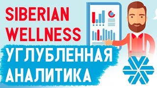 Siberian Wellness УРОКИ. Отчет аналитики в Сибирском Здоровье. Аналитика структуры в МЛМ