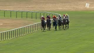 Vidéo de la course PMU PRIX D'AGONGES