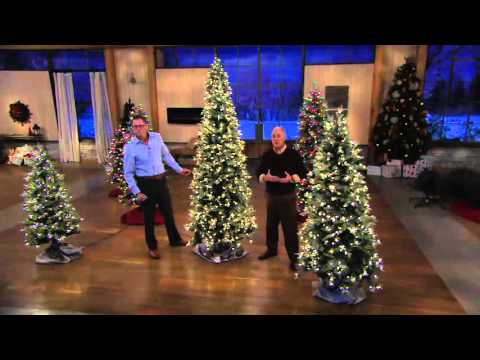 bethlehem lights slim blue spruce christmas tree on qvc