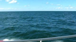 大揺れの飛島航路(その2)