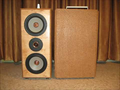 diy-speaker-projects-build-for-customers