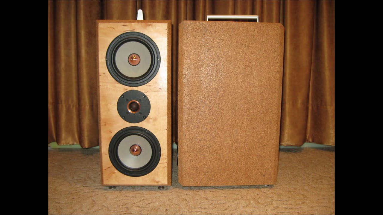 diy speaker projects build for customers - YouTube