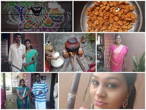 My Pongal celebration blog in tamil.