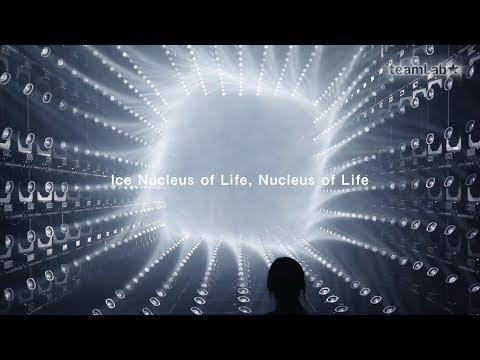 Ice Nucleus of Life, Nucleus of Life