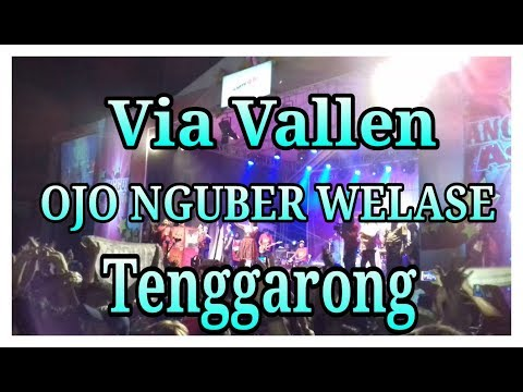 Via Vallen - Ojo Nguber Welase | Tenggarong