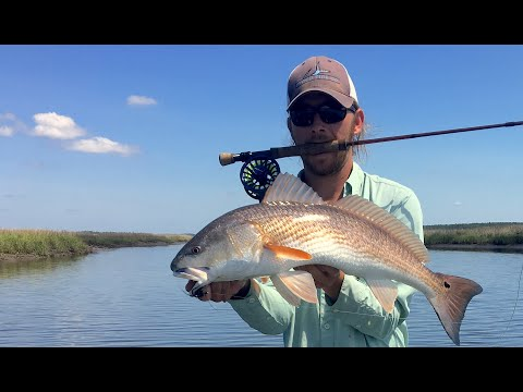 Low Tide Belly-Crawler Redfish Fly Fishing | Charleston Summer Check-in GH5 Vlog