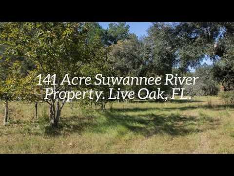 Suwannee River Property For Sale. 141 Acres near Live Oak, FL