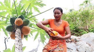 Survival skills: Find food & Meet natural papaya for eat - Natural papaya eating delicious #62