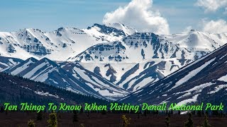 Top 10 Things to Know When Visiting Denali National Park