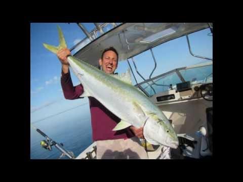 Big fish action in Moreton Bay 6 - Tangalooma Resort Yellowtail Kingfish