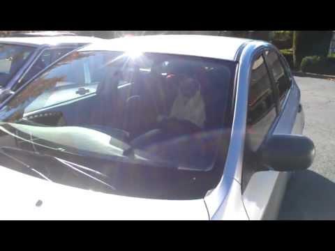 cute little pug puppy dog honks car horn!!